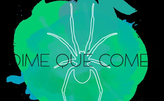 Entrevista a Lucía Martínez de 'Dime qué comes'