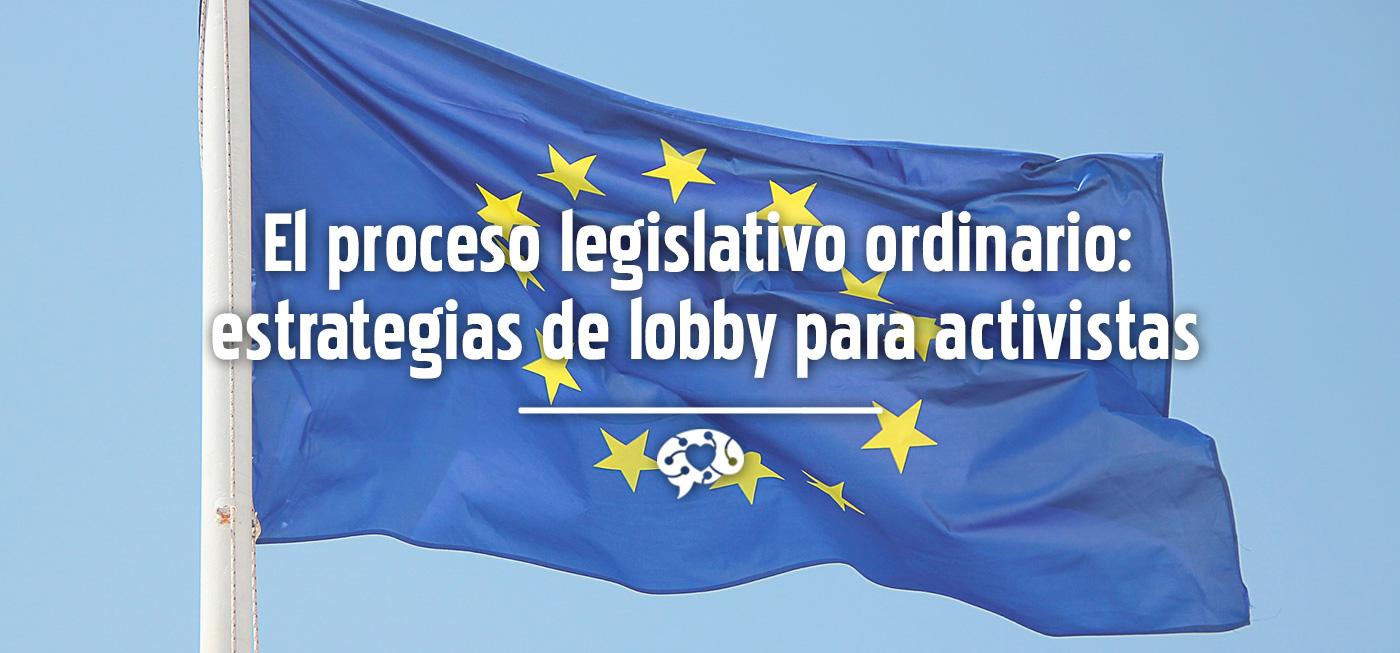 El proceso legislativo ordinario: estrategias de lobby para activistas
